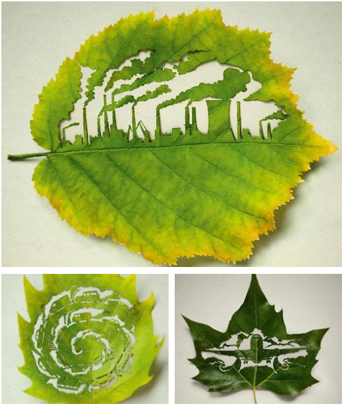 leaf carvings for the environment  by lorenzo duran