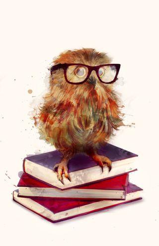 Smart_owl